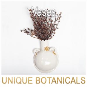 Hazy Tales Botanical Vases 1